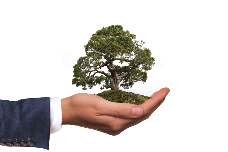 environment-Hand